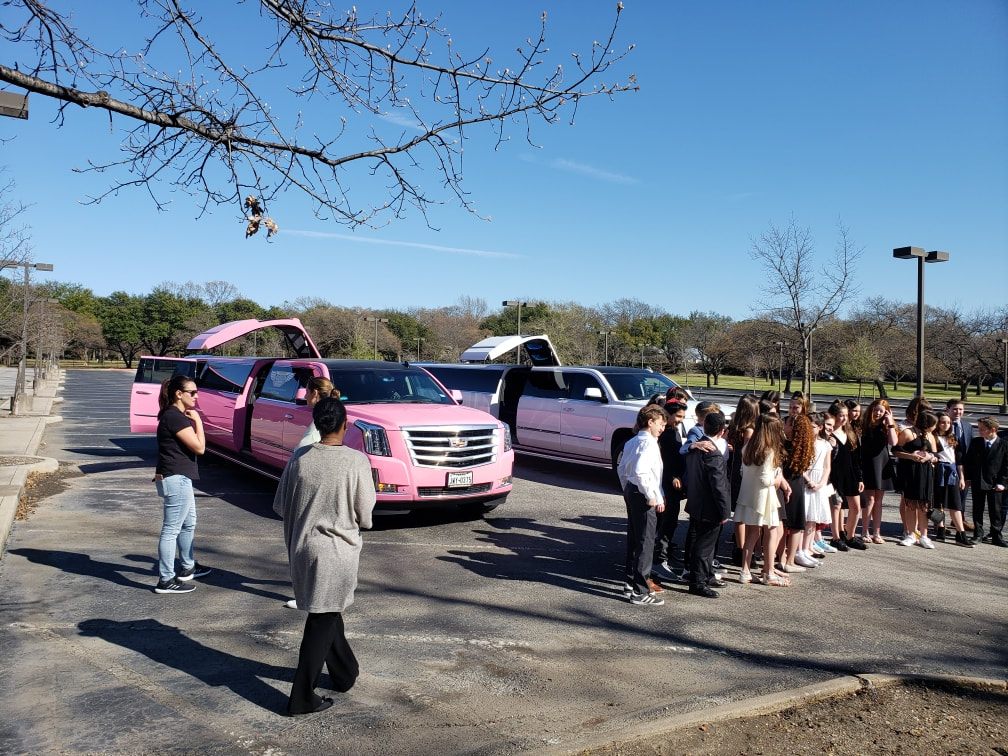 Pink Limo Fort Worth